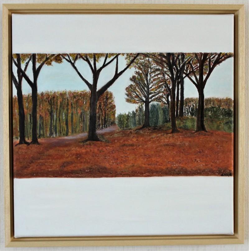 Herfst in Drenthe, te koop