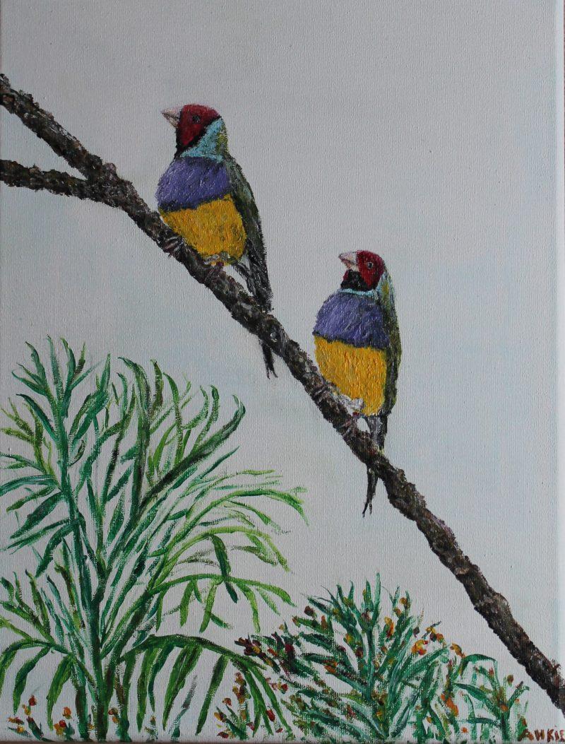 Tropische vogels, werk in opdracht