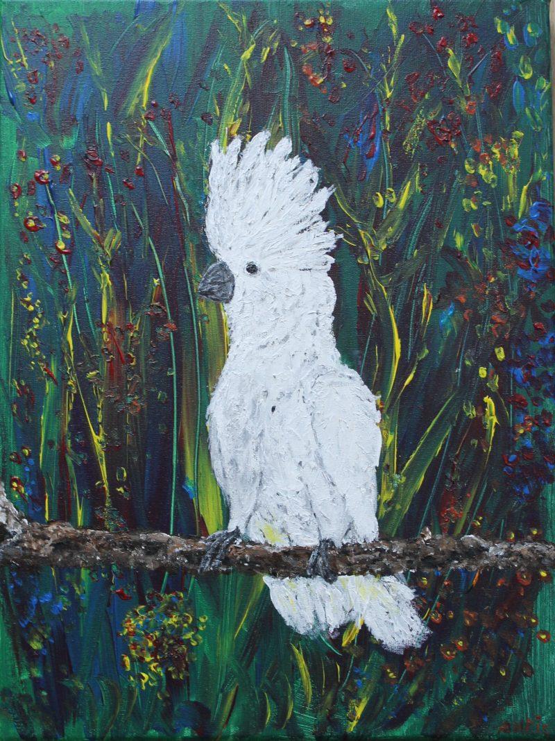 Witte Kaketoe,te koop